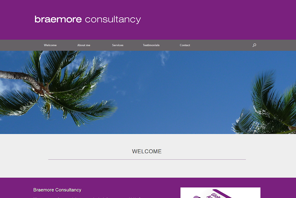 image of Braemore consultancy site developed by Big Media