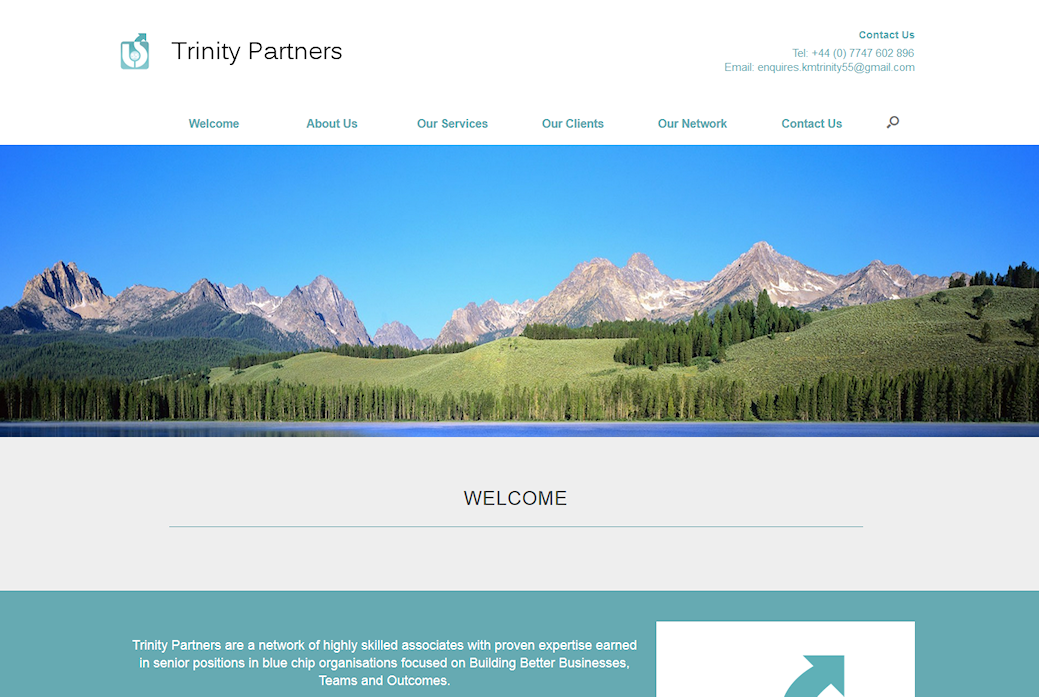 image of Trinity Partners site developed by Big Media